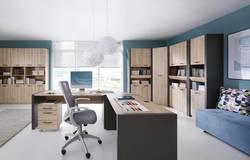 Executive  Biroja iekārta / darba kabinets